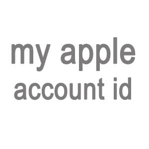 My apple account
